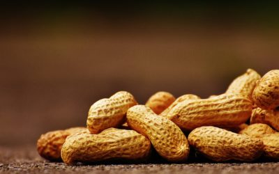 Food Allergies: Food Substitutions for 8 Common Allergens