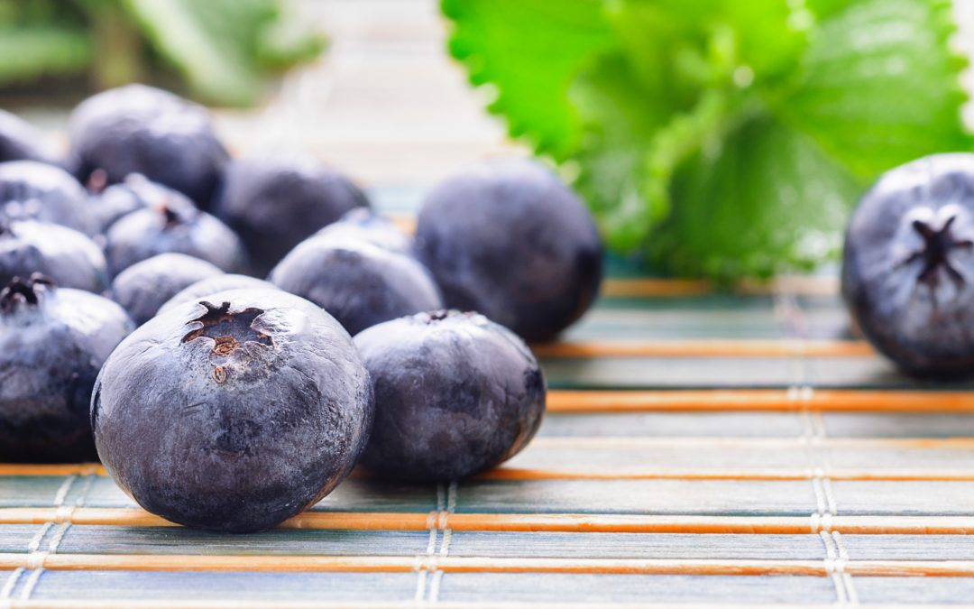 15 Healthy Blueberry Recipes Your Kids Will Love  Blueberries are superfoods for kids and with these healthy blueberry recipes, you'll find new ways to serve them.