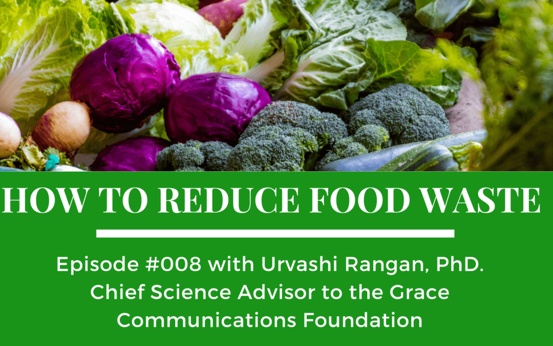 """How to Reduce Food Waste on the """"Food Issues"""" podcast"""